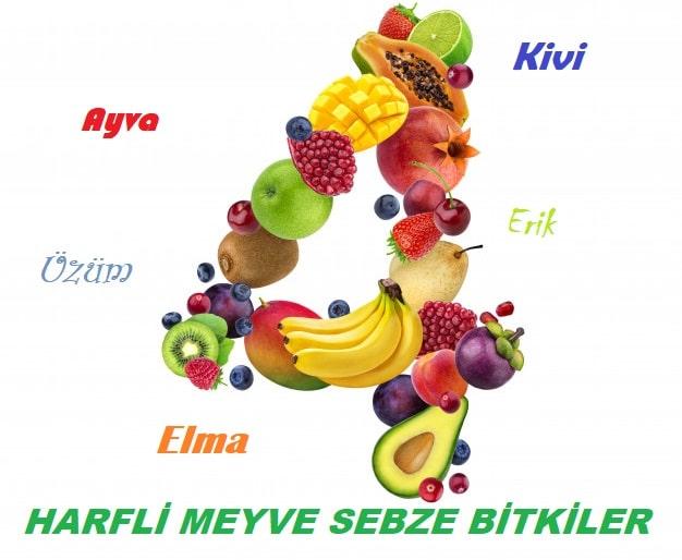 4 Harfli Meyveler Sebzeler ve Bitkiler