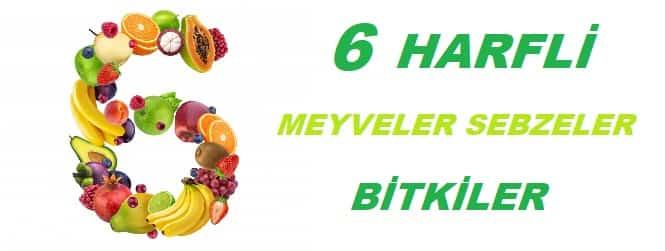 6 Harfli Meyveler Sebzeler Bitkiler