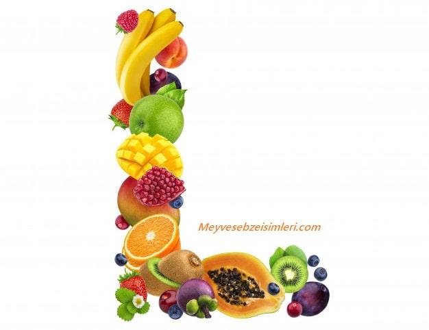 L ile Meyve Sebze Bitki isimleri