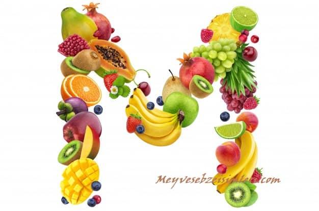 M ile Meyve Sebze Bitki isimleri