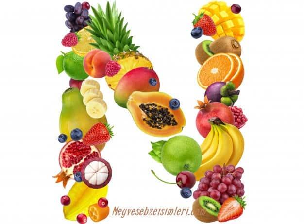 N ile Meyve Sebze Bitki isimleri