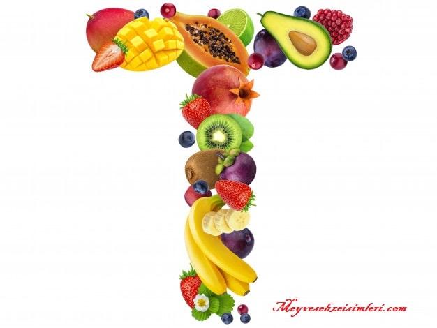 T ile Meyve Sebze Bitki isimleri