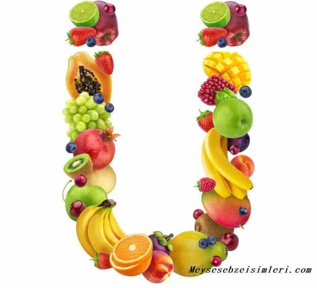 Ü ile Meyve Sebze Bitki isimleri