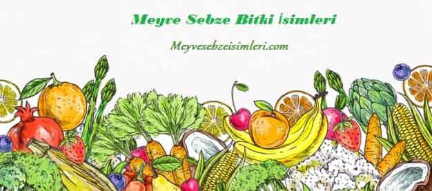 İlkbaharda ve Sonbaharda Yetişen Meyve ve Sebzeler