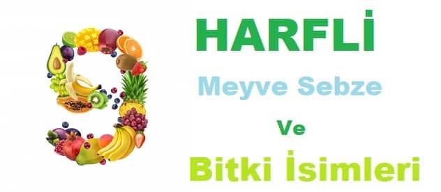 9 Harfli Meyveler Sebzeler Bitkiler