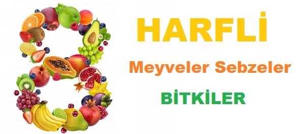 8 Harfli Meyveler Sebzeler ve Bitkiler